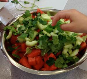 Watermelon-Cucumber-Jicama-Salad