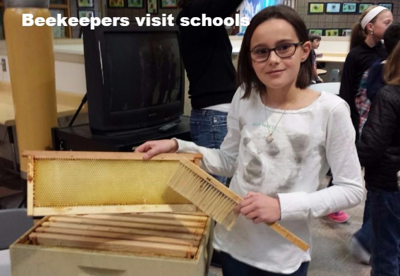 Beekeepers-visit-schools
