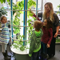 Ms Botts tower garden Parleys
