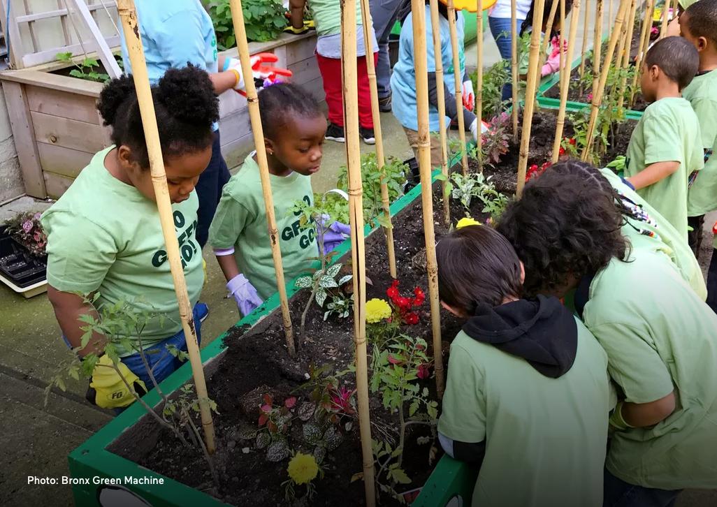 Bronx-school-garden