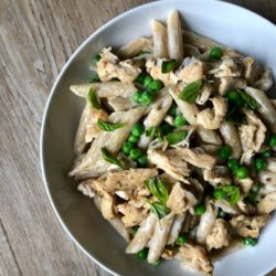 Chicken-alfredo-recipe