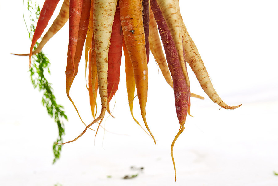 EATS' Family Cooking Class: Carrots Around the World