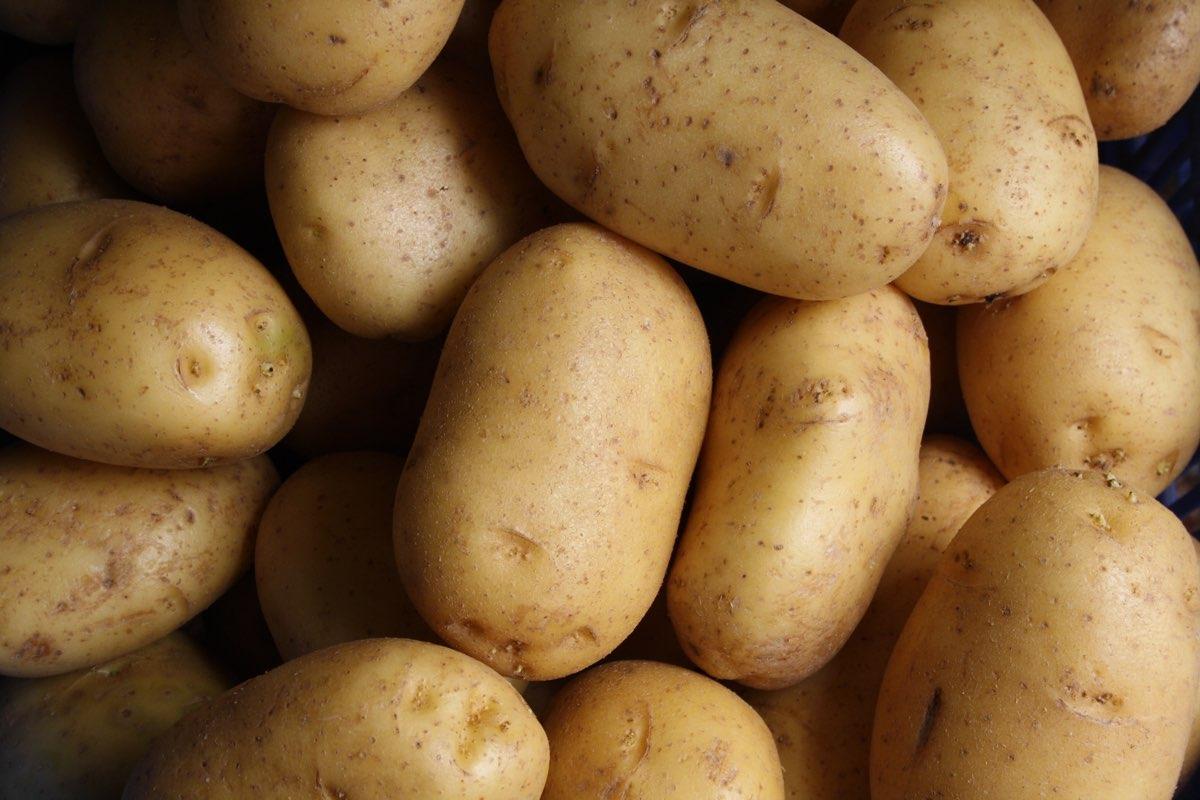 EATS and Alex Make Funeral Potatoes