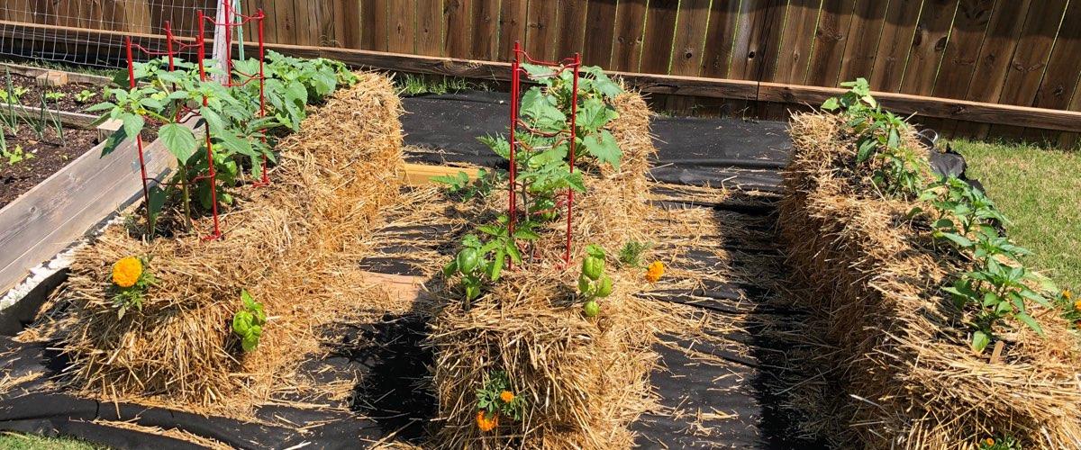 hay-bale-garden-eats