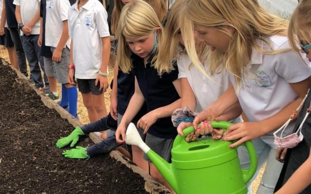 EATS Gardens & Sustainability Programs